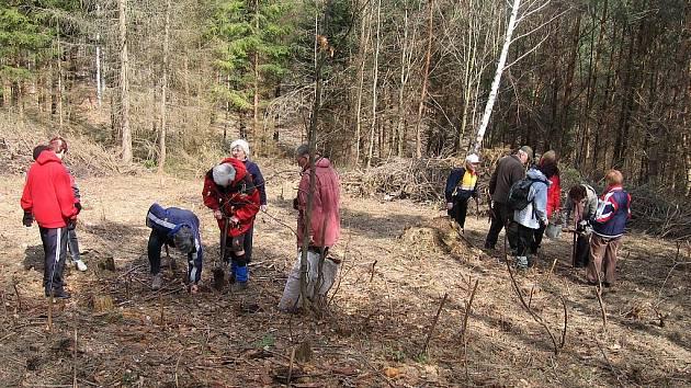 Klub  má rozličné aktivity, kromě pěších tůr také pomáhá lesům.