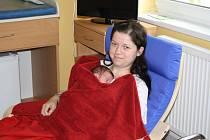 Nové pomůcky vyzkoušela jedna z čerstvých maminek Nikola Cojocarová.