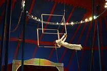 Cirkusy obvykle hostují pouze ve větších městech, kde je nejvíc potenciálních diváků. O to víc si této atrakce váží v menších obcích. Rodinný cirkus Cramer se vydal potěšit diváky Albrechticka a Jindřichovska.