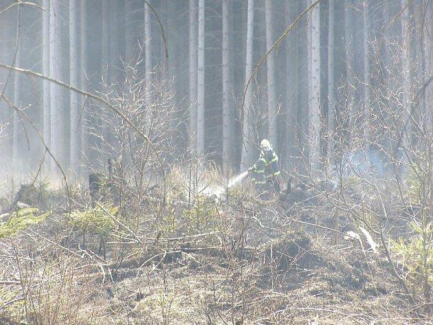 Vypalování trávy musí povinně hlásit hasičům organizace. Jednotlivcům pálícím listí a odpad hrozí pokuta při rozšíření ohně na požár.