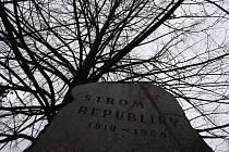Strom republiky má i Krnov. Zdejší lípa byla zasazena 28. října 1968. Několikrát doslova přežila svou smrt.