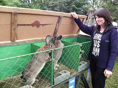Vrbenští chovatelé vystavovali za sklárnami drobné zvířectvo