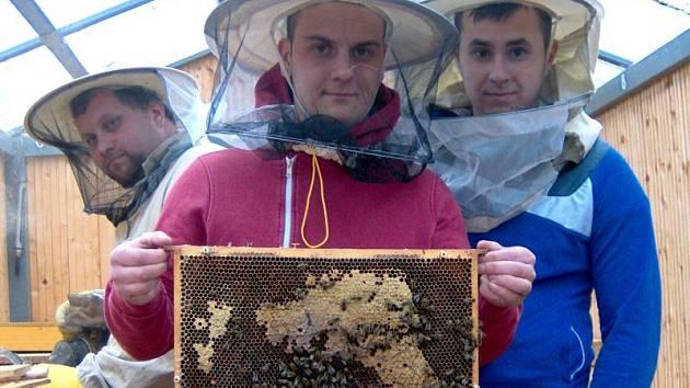 Žác Praktiku na zkušené ve včelařském muzeu v Chlebovicích. Sami jsou již schopni vyrobit úl či jiné dřevěné zvířecí obydlí jakéhokoliv tvaru.