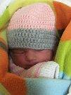 Jmenuji se JASMÍNA BALÁŽOVÁ, narodila jsem se 24. ledna, při narození jsem vážila 2800 gramů a měřila 46 centimetrů. Moje maminka se jmenuje Věra Balážová a můj tatínek se jmenuje Dalibor Pecha. Bydlíme v Osoblaze.