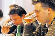 Degustátory na soutěži Jarní cena českých sládků v Pivovarském dvoře Zvíkov jsou samí profesionálové z oboru pivovarnictví. Anonymní vzorky hodnotí nejen podle chuti, ale důležitá je i barva a vůně.