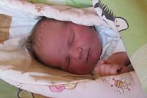 Jmenuji se ANETA PÍPALOVÁ, narodila jsem se 23. Srpna 2017, při narození jsem vážila 3820 gramů a měřila 50 centimetrů. Moje maminka se jmenuje Markéta Strakošová a můj tatínek se jmenuje Petr Pípal. Bydlíme ve Městě Albrechticích.