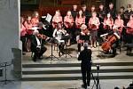 Organizátorem benefičního koncertu pro Ukrajinu byla Římskokatolická farnost v Krnově, měl také podporu města Krnova. Vystoupil na něm také krnovský rodák houslista Heinz Hübner.