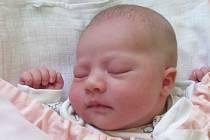 Jmenuji se TEREZA NEJEZCHLEBOVÁ, narodila jsem se 6. května, při narození jsem vážila 3540 gramů a měřila 48 centimetrů. Moje maminka se jmenuje Iveta Nejezchlebová a můj tatínek se jmenuje Marcel Nejezchleb. Bydlíme v Mladecku.