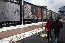 STOP GENOCIDĚ se jmenuje kampaň proti interrupci, která je založena na pouliční výstavě fotografií masakrů, vražd, poprav, mrtvol a potratů. Kdo odporné snímky nechce vidět, musí namísto chodníku použít cyklostezku nebo přejít na opačnou stranu vozovky.