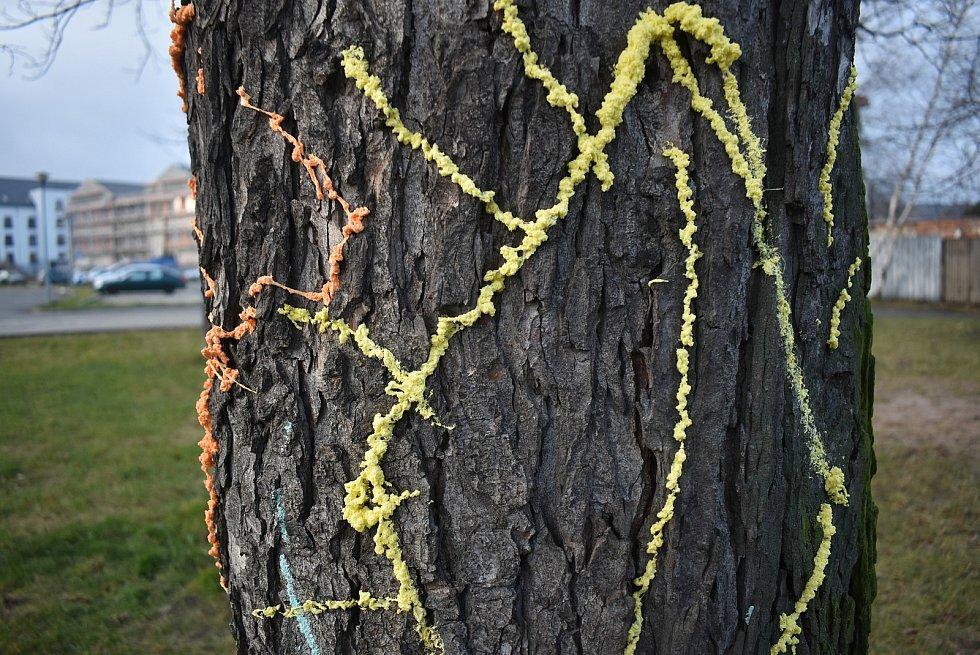 Kosočtverec na stromě u krnovského parkoviště vytvořil streetartový umělec reflexní pártypěnou, která v noci hezky svítí a navíc ji lze snadno odstranit z každého povrchu
