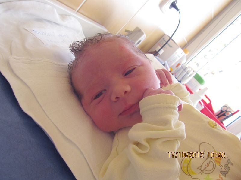Jmenuji se JAROMÍR DEMJANOVIČ  a narodil jsem se 17. října 2012, měřil jsem 50 centimetrů a vážil jsem 3485 gramů. Moje maminka se jmenuje Lucie Demjanovičová a tatínek se jmenuje Jaromír Demjanovič. Bydlíme v Břidličné.