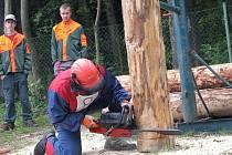 V dovednosti zacházení s motorovou pilou závodili v sobotu dřevorubci na Dřevařských, lesnických a mysliveckých dnech v Rýmařově.