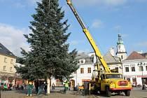 Osazení vánočního stromu na náměstí Míru v Bruntále.
