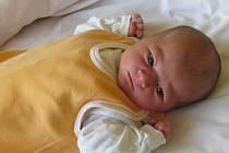 Jmenuji se KAROLÍNA POKORNÁ, narodila jsem se 1. června, při narození jsem vážila 3120 gramů a měřila 49 centimetrů. Moje maminka se jmenuje Ivana Pánková a můj tatínek se jmenuje Matěj Pokorný. Bydlíme v Horním Benešově.