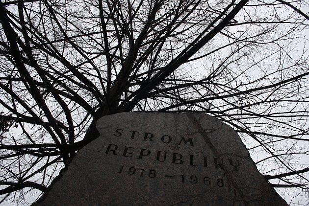 Lípa vysazená vKrnově 28.října 1968byla tichým protestem proti sovětské okupaci. Byla zničena, ale znovu vyrašila zkořenů a roste vKrnově dodnes.