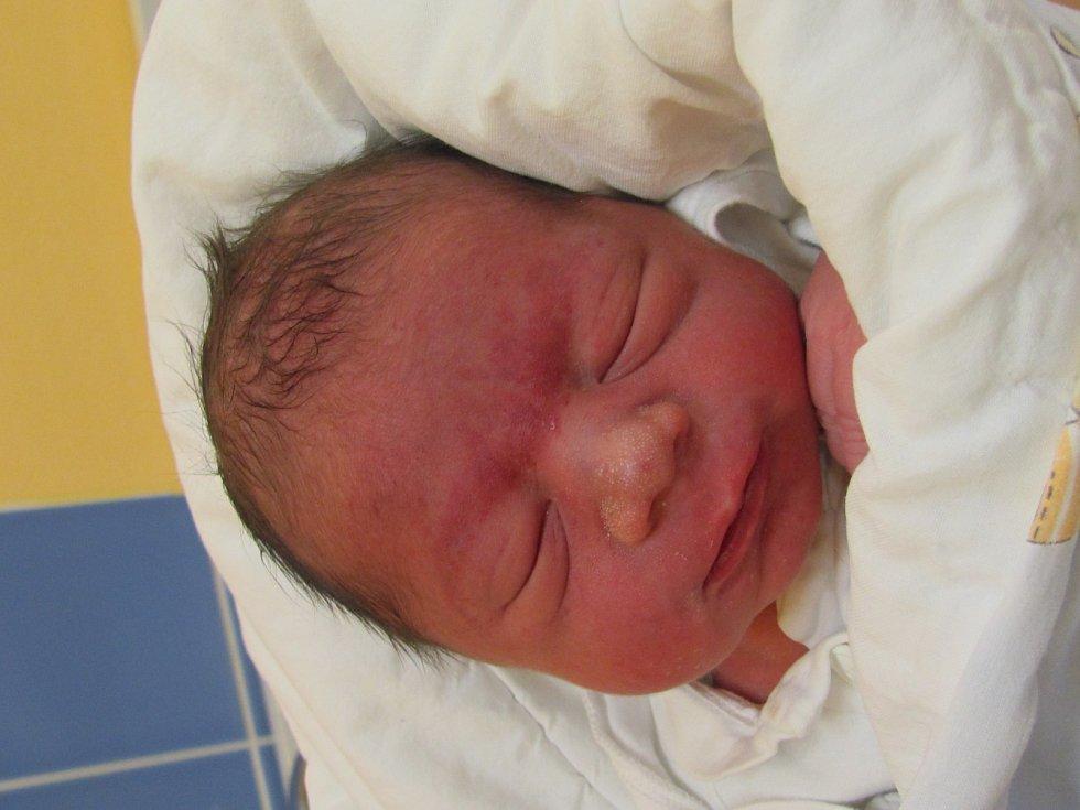Jmenuji se Lubomír Žiga, narodil jsem se 10. Ledna 2019, při narození jsem vážil 2540 gramů a měřil 46 centimetrů.