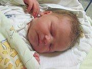 Jmenuji se RADEK KRČMARÍK, narodil jsem se 18.dubna 2018, při narození jsem vážil 3580 gramů a měřil 51 centimetrů. Moje maminka se jmenuje Kristýna Musilová a můj tatínek se jmenuje Radek Krčmarík. Bydlíme ve Vrbně pod Pradědem.