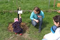 Svůj stromek si se zájmem prohlížely i samy děti, kterým je věnován.