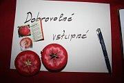 REDLOVE ERA chutná jako obyčejné jablko, ale má červenou nejen slupku, ale i dužinu.