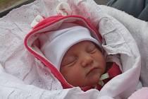 Jmenuji se LUCINKA GREGÁRKOVÁ, narodila jsem se 27. února, při narození jsem vážila 2990 gramů a měřila 50 centimetrů. Moje maminka se jmenuje Lucie Gregárková a můj tatínek se jmenuje Marek Halenka.