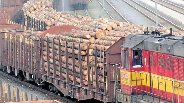Vagony plné smrkového dříví naznačují, kolik lesů zmizelo kvůli kůrovcové kalamitě.