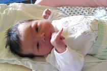 Jmenuji se NATÁLKA MAŠKOVÁ, narodila jsem se 10. července. Při narození jsem vážila 3865 gramů a měřila 51 centimetrů. Moje maminka se jmenuje Sandra Müllerová a tatínek se jmenuje Lukáš Mašek. Bydlíme v Lichnově.