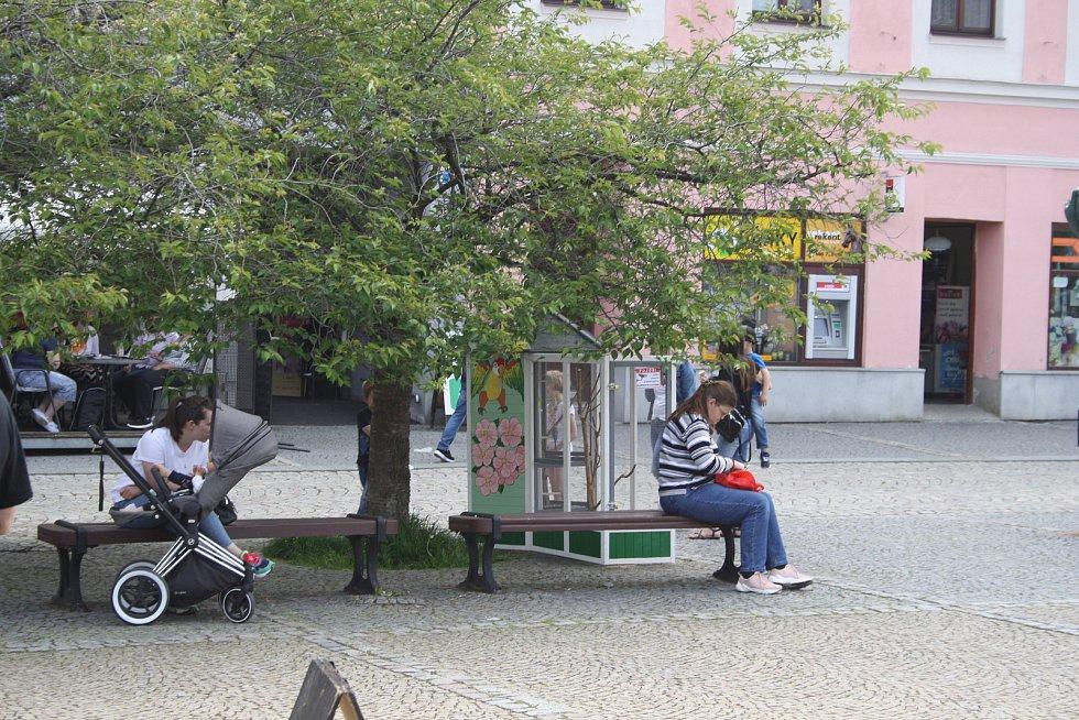 Voliéra s andulkami je novou atrakcí bruntálského náměstí.
