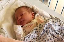 Jmenuji se NATÁLKA PARYSOVÁ narodila jsem se 6. prosince, vážila jsem 3245 gramů a měřila 50 centimetrů. Moje maminka se jmenuje Michaela Skopalová a můj tatínek se jmenuje Rostislav Parys. Bydlíme v Krnově.