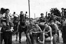 Brigádníci při žních v Dívčím Hradě v roce 1951.