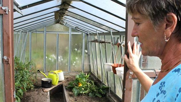 Anna Vodičková pěstovala na své zahrádce ovoce a zeleninu pro zloděje, kteří tento týden navštívili její pozemek.
