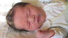 Jmenuji se TEREZA PATŮČKOVÁ, narodila jsem se 6. září, při narození jsem vážila 3160 gramů a měřila 46 centimetrů. Moje maminka se jmenuje Hana Patůčková a můj tatínek se jmenuje Miroslav Lacek. Bydlíme v Krnově.