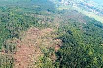 Teprve až letecké snímky ukázaly pás vyvrácených stromů, který za sebou zanechalo tornádo na své cestě z Ježníku do Kostelce.