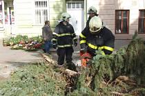 Dobrovolní hasiči z Bruntálu likvidovali kmen stromu, který větrná nadílka zlomila na Palackého náměstí.