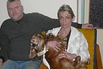 To, že Vánoce 2012 prožila Jana Skotnicová z Krnova se svým jezevčíkem Sandym, je malý zázrak. Pár dní před svátky krnovský veterinář Karel Galuszka ml. zachránil Sandymu život riskantní operací, při které mu vyňal velký nádor i se slezinou.