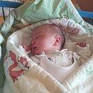 Jmenuji se RICHARD PROCHÁZKA, narodil jsem se 17. února, při narození jsem vážil 3600 gramů a měřil 48 centimetrů. Moje maminka se jmenuje Dominika Procházková a můj tatínek se jmenuje Miloš Procházka.