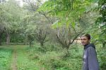 Lukáš Matela ze spolku  Slezské odrůdy bilancuje první sezonu v městském sadu. Už se zde podařilo určit staré odrůdy jabloní Bernské růžové, Croncelské, Spartan, Průsvitné letní, Starkinson, Strýmka a  Malinové hornokrajské