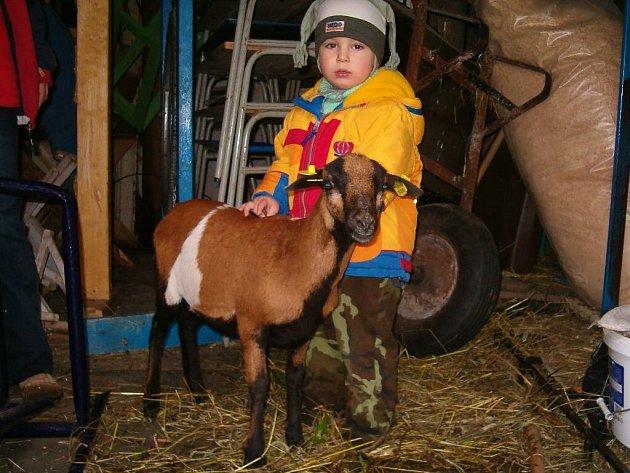Koza Zuzana má děti ráda.