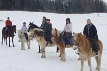 Vyfotit celou skupinu koní a přimět je, aby chvíli postáli, je téměř nadlidský úkol. Jana Blažejová (v červené čelence) nelituje, že vyměnila kancelář s počítači za stáje, přírodu a koně.