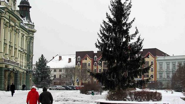 Vánoční strom pro krnovské náměstí pochází z Chářovské ulice. Jedná se o smrk napadený houbami, který bylo nutné brzy pokácet. Místní občané navíc proti kácení vánočního smrku protestovali, protože nevěděli, že by stejně musel jít k zemi.