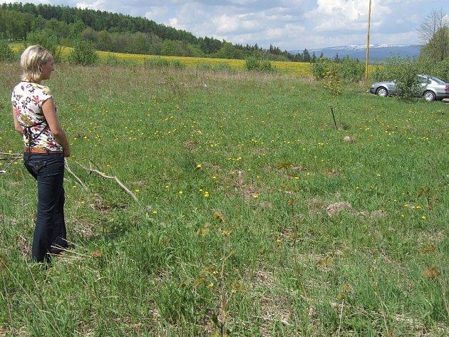 Na Uhlířském vrchu by měla zanedlouho začít výstavba nového pohřebiště.