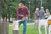 Kdo má něco společného se dřevem a lesem, nemohl v sobotu 3. září chybět na Dřevařských, lesnických a mysliveckých dnech v Rýmařově.