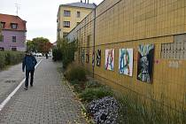 Galerie v místech, kde by umění nikdo nečekal. Na zdi krnovského Prioru. Říjen 2021