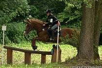 Jezdecká všestrannost se skládá z drezúry, terénní a skokové zkoušky.