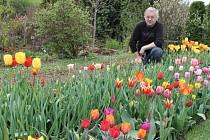 Pozemek Petra Masopusta v Mezině je balzámem pro duši i oči. Tolik odrůd, tvarů a barev člověk jinde jen těžko hledá.