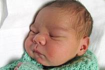 Jmenuji se VIKTORIE MLČOCHOVÁ narodila jsem se 12. února, při narození jsem vážila 3330 gramů a měřila 47 centimetrů. Moje maminka se jmenuje Martina Žigová. Bydlíme ve Vrbně pod Pradědem.