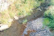 Řeka Bystřice, zdroj pitné vody pro několik obcí, v období extrémního sucha téměř vyschla.