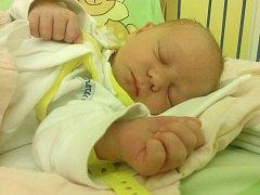 Jmenuji se DOMINIKA ADÁMKOVÁ, narodila jsem se 8. ledna, při narození jsem vážila 2845 gramů a měřila 48 centimetrů. Moje maminka se jmenuje Karla Adámková a můj tatínek se jmenuje Pavel Adámek. Bydlíme ve Městě Albrechticích.