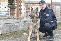 Bruntálský psovod Pavel Klohna se svým služebním psem Jegorem tvoří nerozlučnou dvojici. Podobně to měl policista i s předchozími svěřenci.