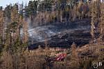 Poblíž Zátora Louček v lokalitě Radimský kopec probíhá kůrovcová těžba. V neděli zde oheň zasáhl území o rozloze šest hektarů. Foto: HZS BR