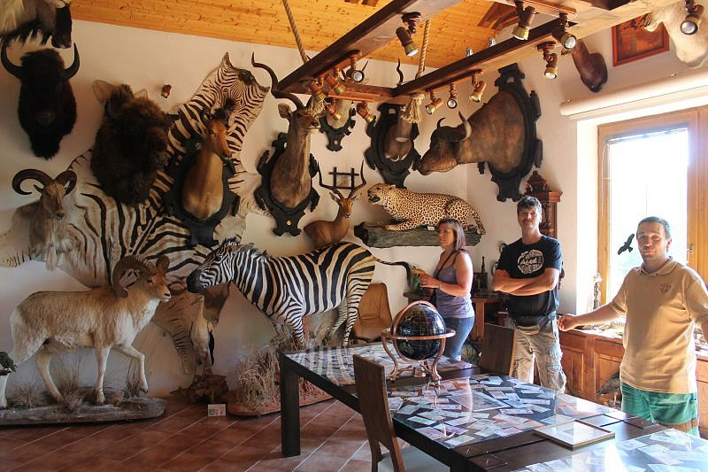 Jen čtyři kilometry od Holčovic směrem na Karlovice najdou lidé pravé africké muzeum. Přestože se jedná o muzeum africké, uvidíte zvířata celého světa. Ulovil je majitel zdejší farmy Jiří Čížek se svými přáteli při toulkách Afrikou i jinými kontinenty.
